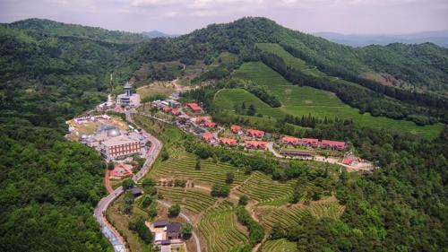 NOKCHA RESORT, Boseong