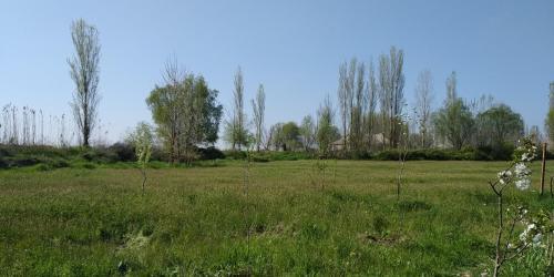 Karabagli Village, Salyan