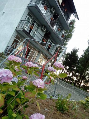 Hotel Cardinal, Ozurgeti