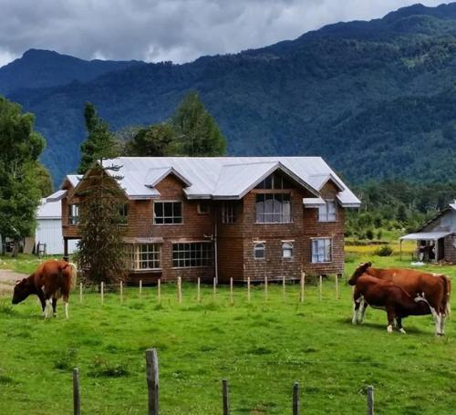 Tepaluma B&B, Aisén