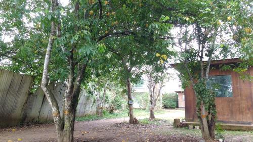 El paraiso, Tambopata