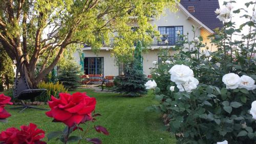 Villa Westfalia Guest House, Targu Secuiesc