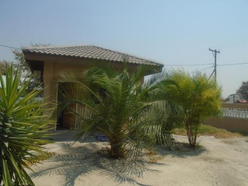 Bel Rea Guest Lodge, Tutume
