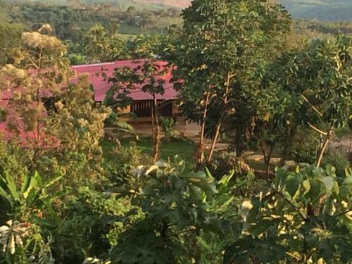 Lamas Tarapoto Peru Casa de Campo, Lamas