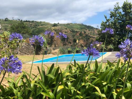 Quinta Sao Lourenco, Calheta