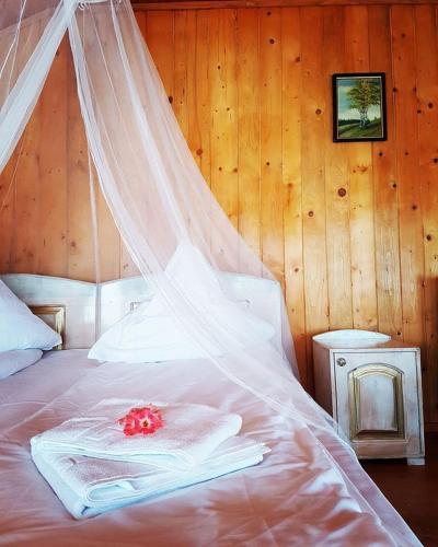 Dream Tricule, Svinita
