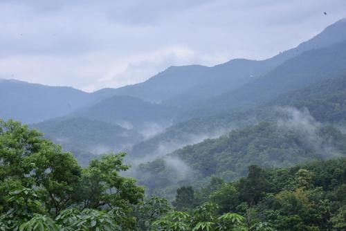 Hill View Stay Inn Ponmudi, Thiruvananthapuram