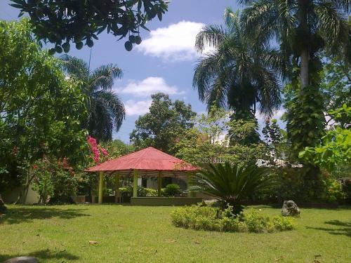 Los Palmares Guest House & Eventos, San Cristóbal