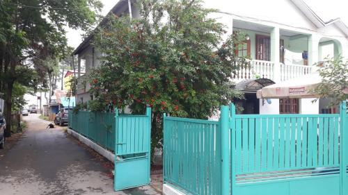 Guest house on Devyatnadtsataya, Ozurgeti