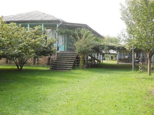 Lilia's Cozy House, Abasha