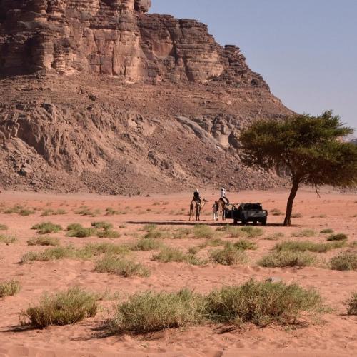 Wadi Rum Adventure Tours & Camp, Quaira