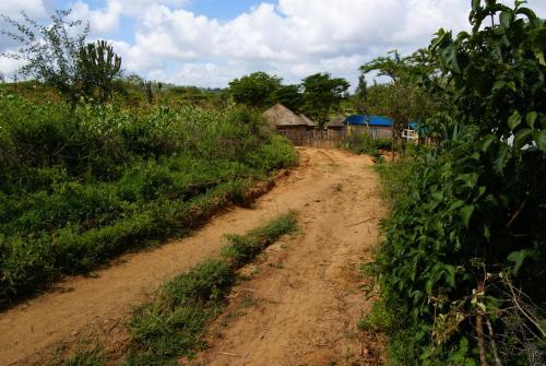Mithiini Cottages, Kitui West