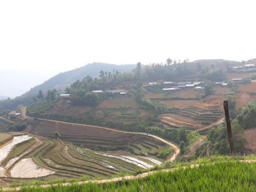Mu Cang Chai New Homestay, Mù Căng Trai