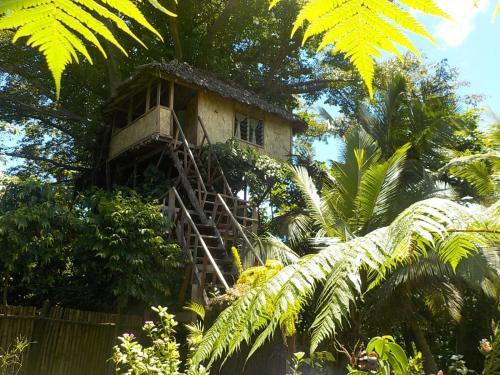 Tanna Eco Venture Bungalow & Adventure Tree House, Whitesands