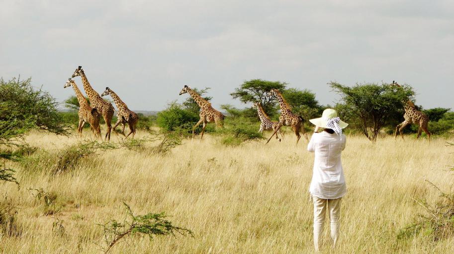 Maasai Simba Camp, Kajiado South