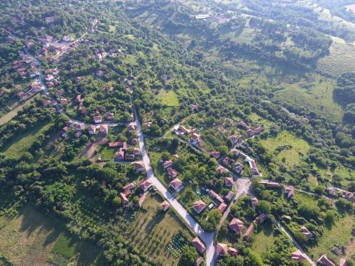 Онгъл юг, Letnitsa