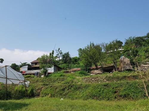 Aanan agro farm, Gandaki