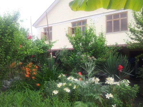 U Tamary Guest House, Gagra