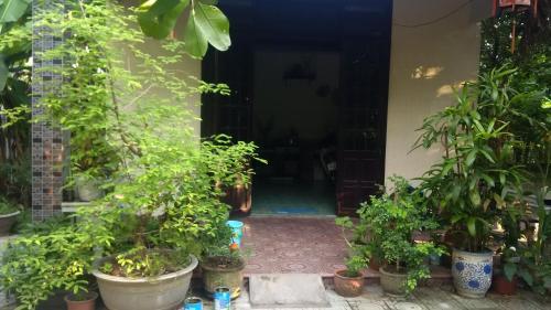 Den Garden homestay, Huế