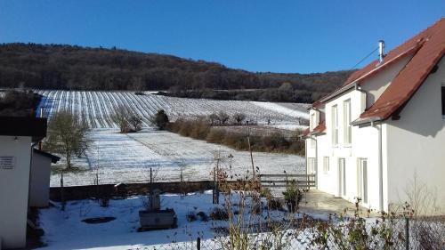 Aux vignes, Bas-Rhin