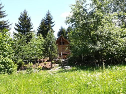 hut in mestia, Mestia