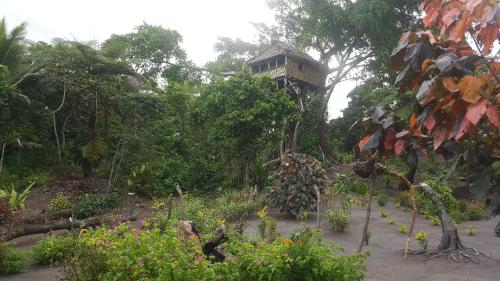 Volcano Sea View Tree House, West Tanna
