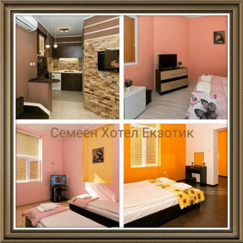 Guest Rooms Exotic, Pazardzhik