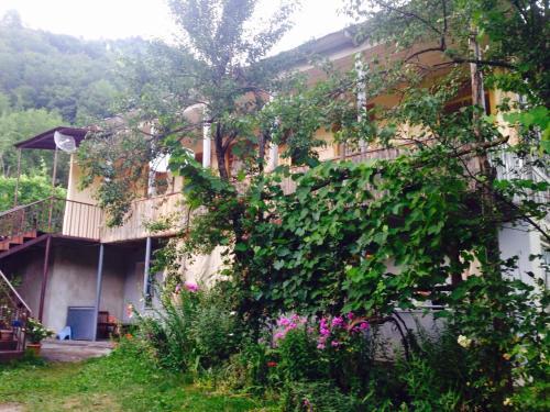 Hospitable house/სტუმართმოყვარე სახლი, Lentekhi