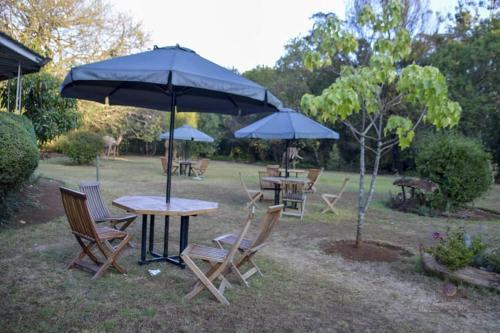 monarch garden eldoret, Kesses