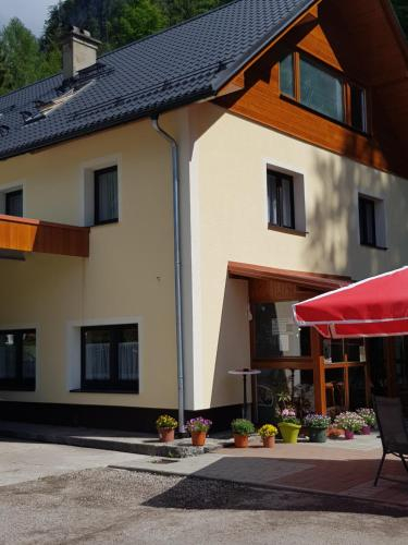 Seeblick Krippenstein, Gmunden