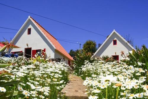 Holiday homes Ribeira Brava - FNC01004-IYA, Ribeira Brava