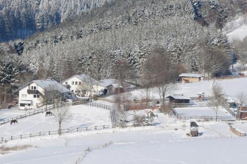 Dumpelhof Ferienwohnungen, Hochsauerlandkreis