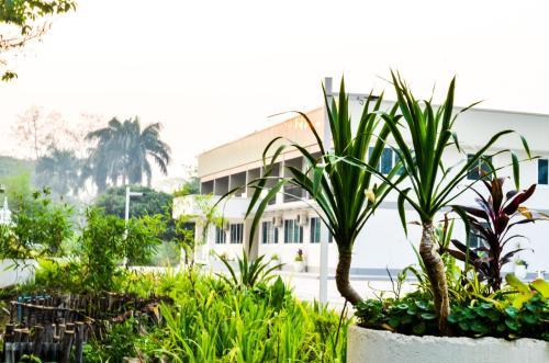 Chiangdaoplace, Chiang Dao