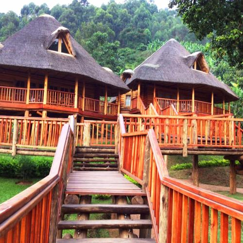 Trackers Safari Lodge, Kinkiizi