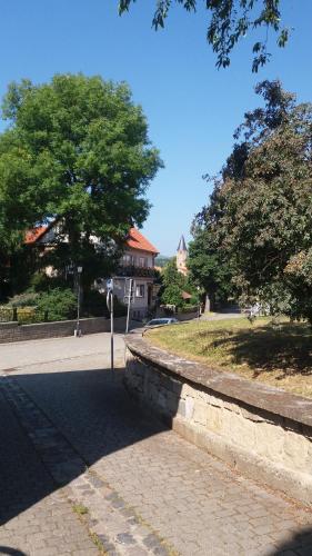 Harzgeist, Harz