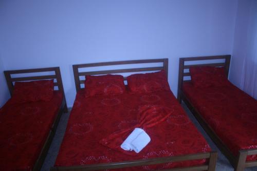 Aial Hotel, Shkodrës