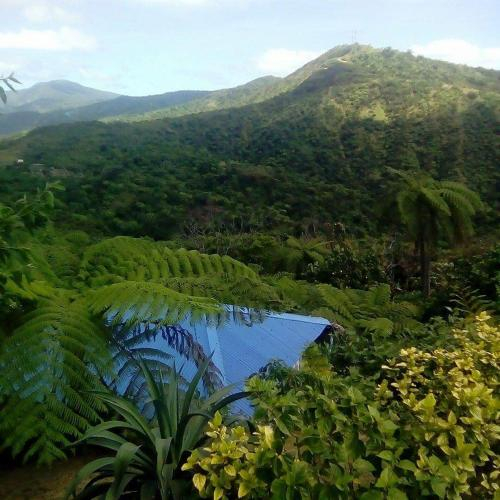 Tanna Top View Bungalows, Whitesands