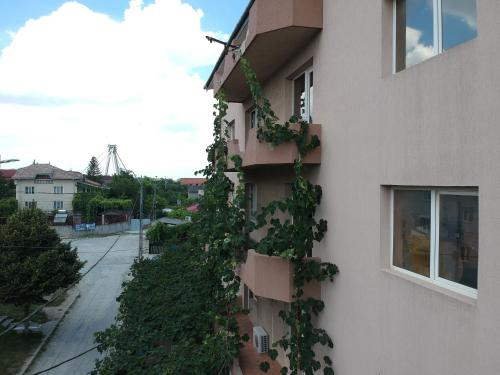 Vila Eliade, Agigea