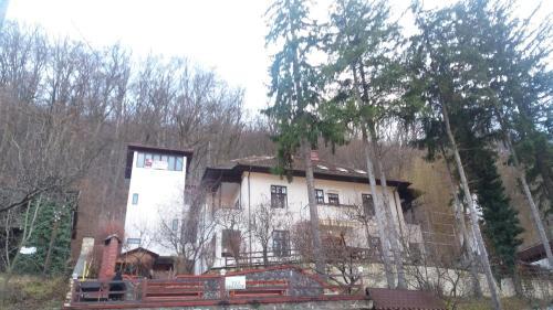 Vila Brazilor, Calimanesti