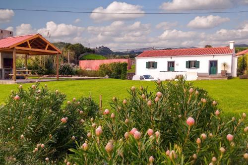 Protea Cottage, Horta