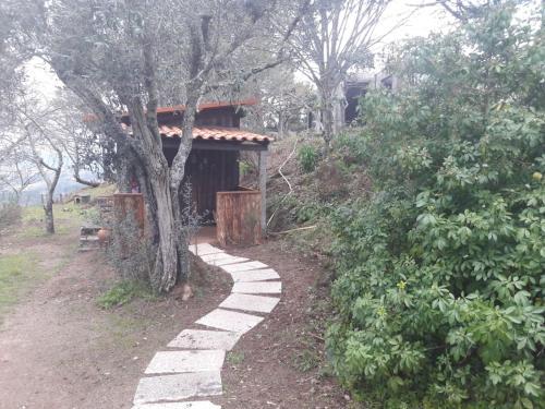 Cabana da Oliveira, Marco de Canaveses