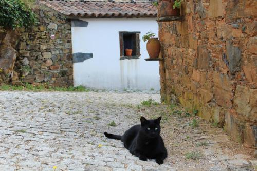 Vilar dos Condes, Oleiros