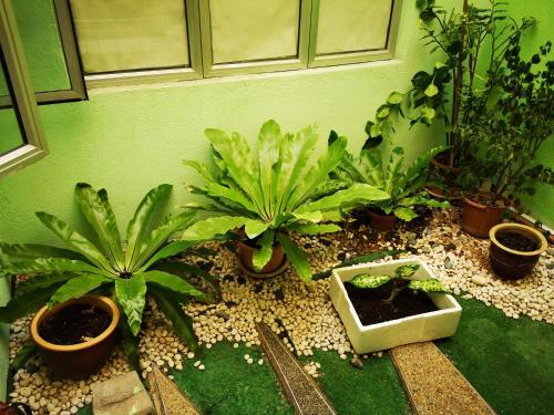 Green Fortress, Kota Melaka
