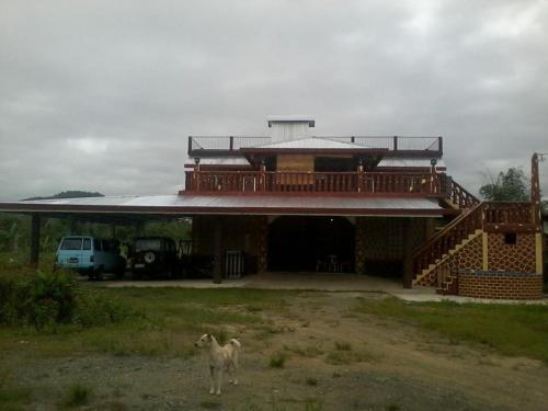 Kugville, Palo