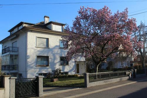 Appt 130 m², Bas-Rhin