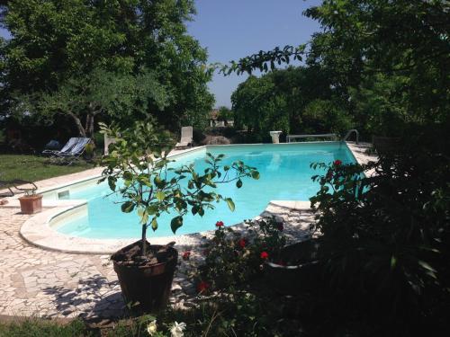 Casale Hortensiae, Viterbo