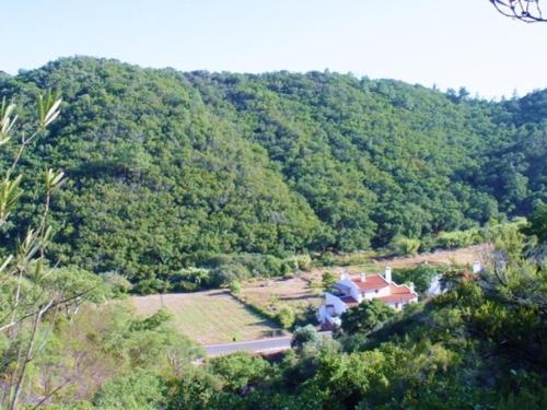 Monte Verde, Odemira