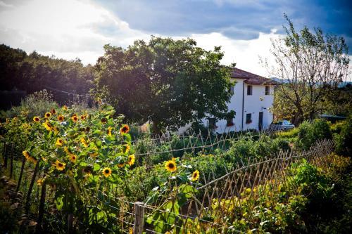 Apartment with privat garden, Terni