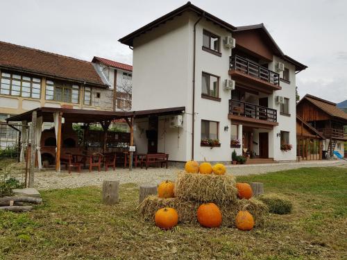 Casa Cozia, Calimanesti