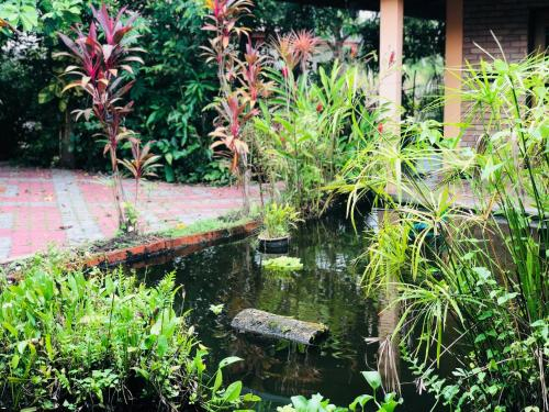 Kenanga Villa, Perlis